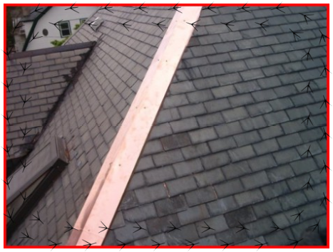West Lothian Roofing Services Scotland Roofing